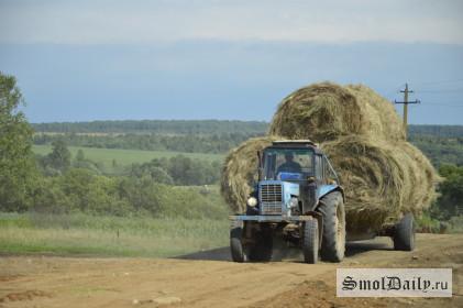 сельское хозяйство, апк