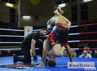 бокс, борьба, спорт