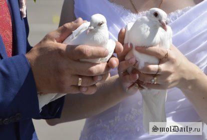 свадьба, семья, голуби