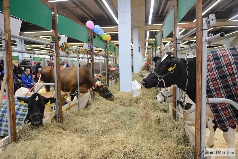 Кубанские аграрии представят свою продукцию навыставке «Золотая осень» в столице России